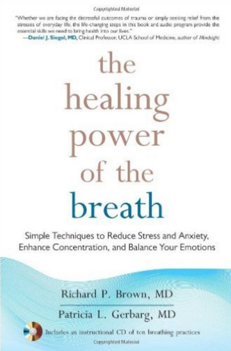 The Healing Power of the Breath: Simple Techniques to Reduce Stress and Anxiety, Enhance Concentration, and Balance Your Emotions | Recommended Books | Quantum Energy Healers | Friendswood, TX