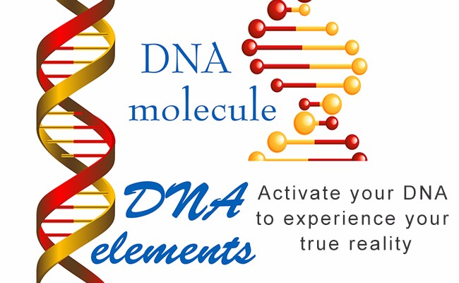 DNA molecule and elements | Activate your DNA to experience your true reality | Quantum Energy Healers | Counseling Friendswood, TX
